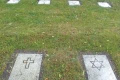 04. Davidsstjärnor och kors pryder gravstenarna som ligger i symmetriska rader i parken.